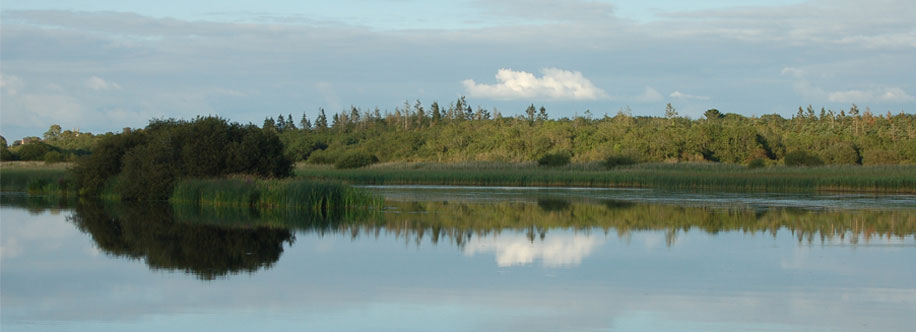 Image of the Lough Ree Cut at Lanesborough