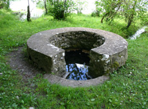 Lady Well, Newtowncashel