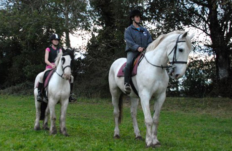 Horse Riding at Mount Cashel