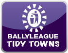 Ballyleague Tidy Towns Page