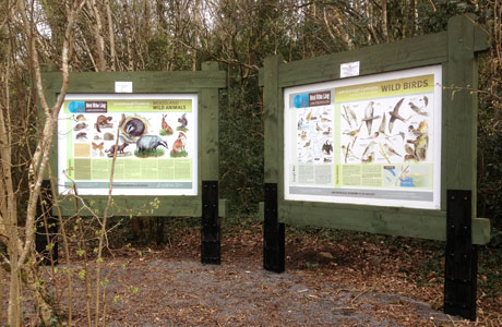 Woodland Walk Wildlife Boards
